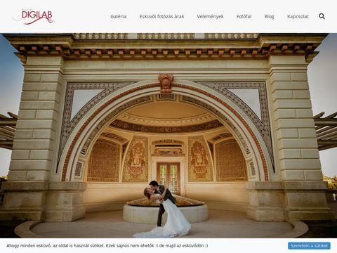 Esküvői szolgáltató: Digilab Esküvői Fotó