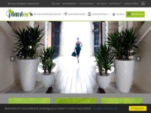 Esküvői szolgáltató: PlantArt Dekoráció