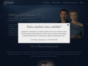 Esküvői szolgáltató: Splendor Ékszer
