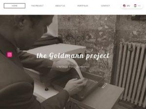 thegoldmannproject.com