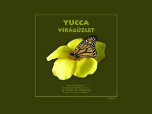 Esküvői szolgáltató: Yucca Virágüzlet