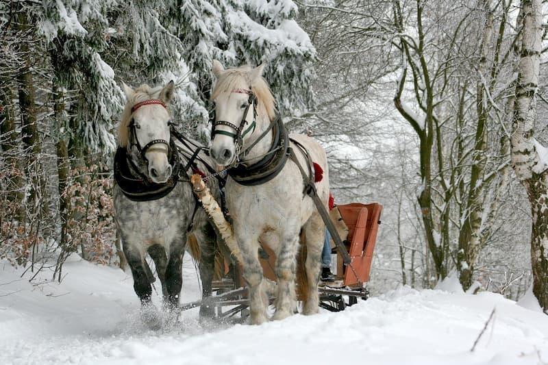 téli esküvő lovashintó